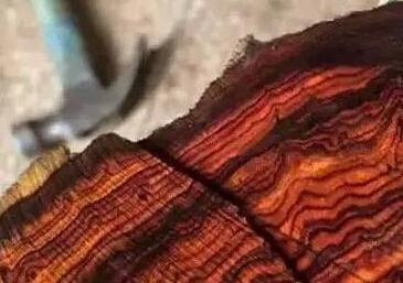 红木原料价格普涨 哪一种红木更值得投资收藏?