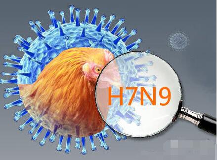 H7N9疫苗临床试验:药企拿到H7N9疫苗临床试验批件 H7N9疫苗什么时候上市