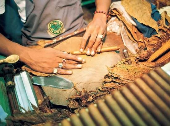 探秘古巴雪茄 独特的烟叶混合法