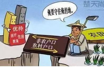 http://news.cngold.org/huati/c4841683.html