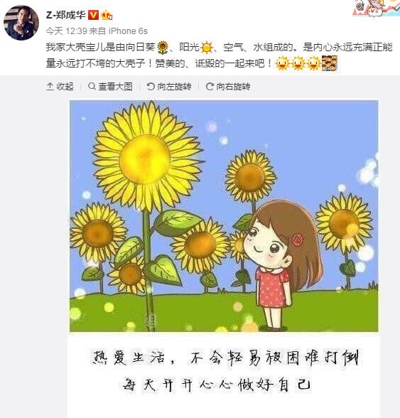 郑成华晒漫画声援女儿 称大壳宝儿是向日葵空气等组成