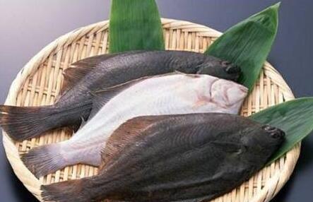 鱼哪个部位营养高肉又嫩?每个部位的营养有什么不同?