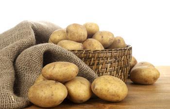 马铃薯图片和介绍