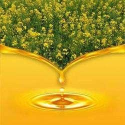 菜籽油期货品种概况