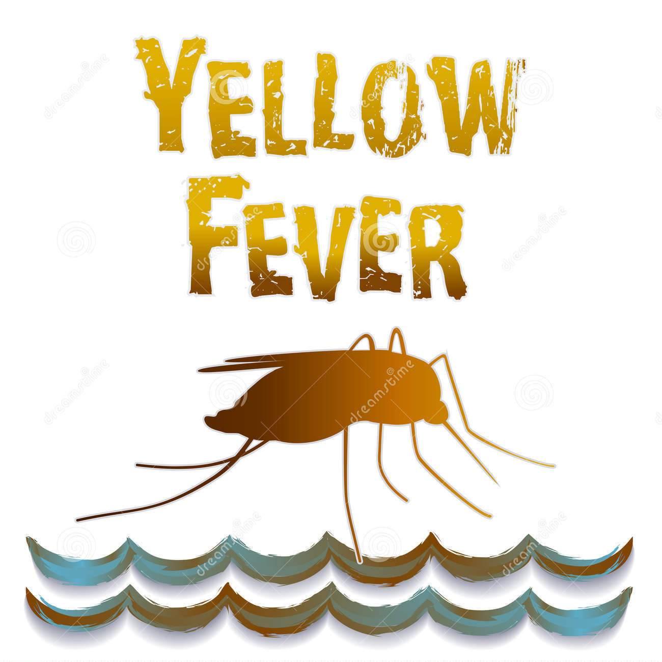 巴西黄热病死亡人数超两百 目前尚无特效疗法