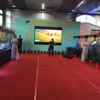 第五届中国(湖南)国际矿物宝石博览会郴州开幕