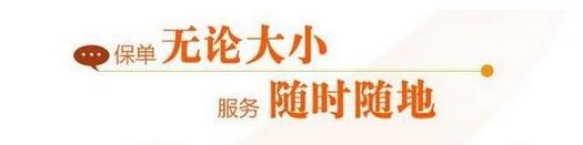 """新华人寿""""乐行无忧A款两全保险""""有哪些保障?"""