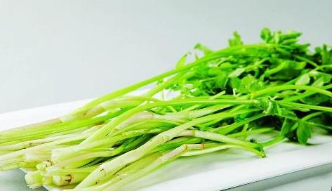 芹菜有什么好处?芹菜做法有哪些?