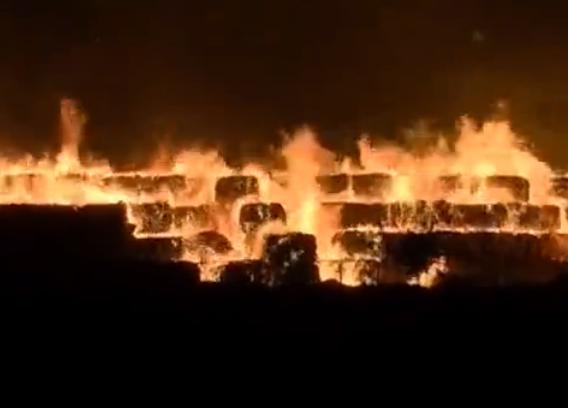 天津港新南纸业发生火灾 火灾原因正在调查中