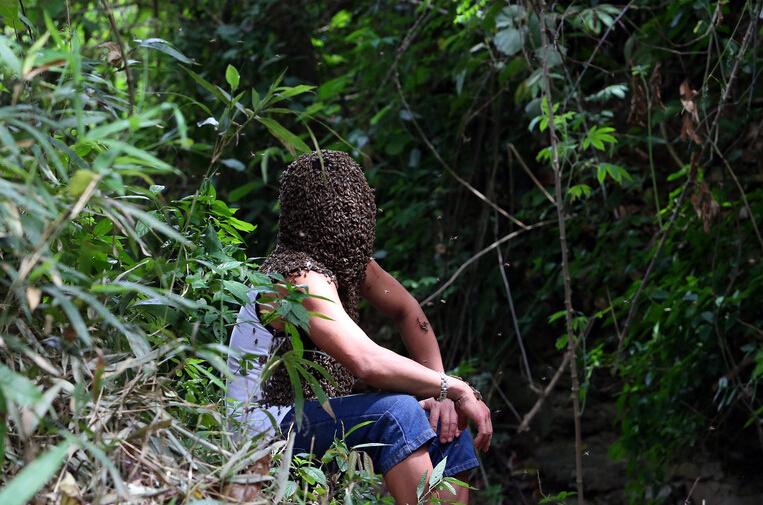 养蜂人展示捕蜂神技能