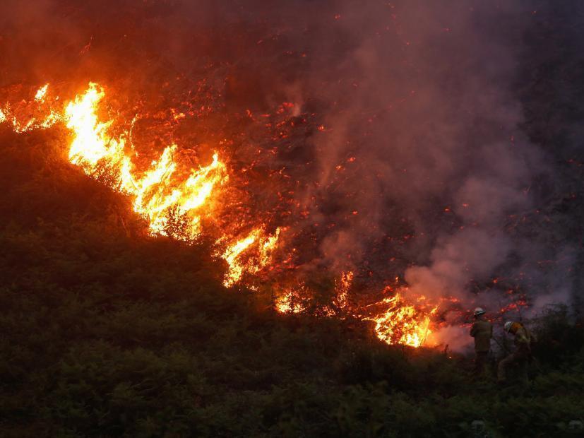葡萄牙政府宣布全国哀悼三日,总理科斯塔表示,山火可能是高温和旱天雷所致,伤亡人数或会上升,当务之急是拯救被困人士。当局出动超过700名消防员灌救,但火势未受控。图为森林大火蔓延。