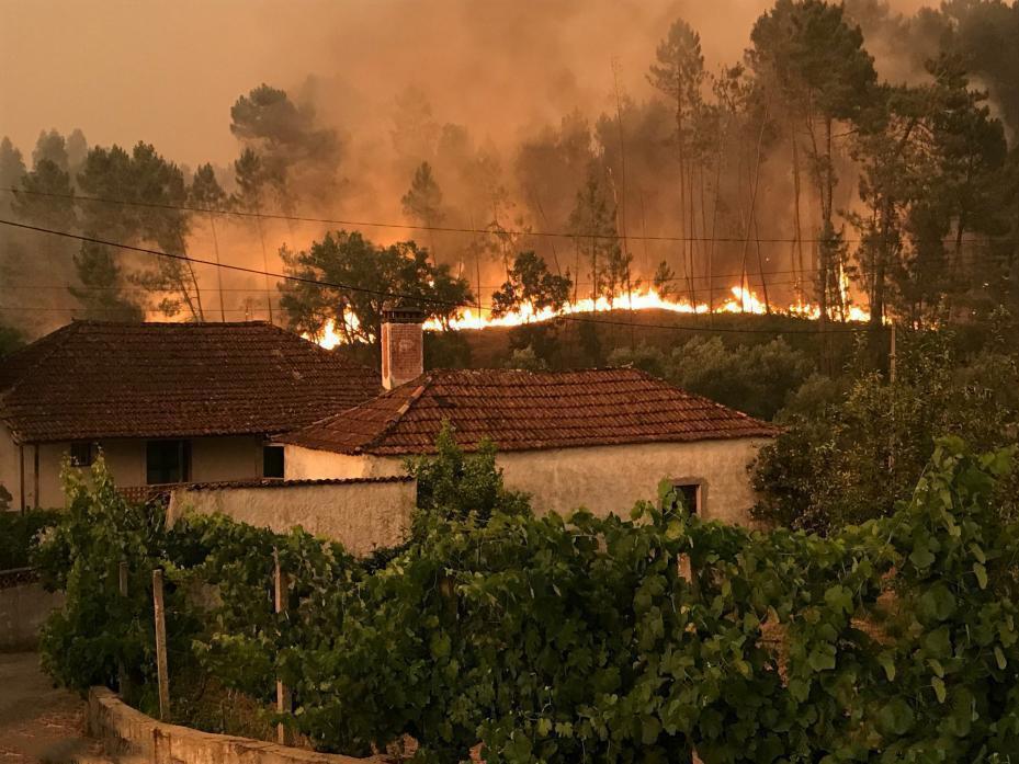 大佩德罗冈镇镇长阿尔维斯表示,最终死亡人数可能会接近100。两名消防员仍然失踪。数条村落被大火包围,救护人员无法内进。有司机因烟雾弥漫,被迫反方向而行。图为葡萄牙中部大佩德罗冈山区附近的Atalaia Cimeira村,森林大火蔓延到村庄周围,形势严峻。