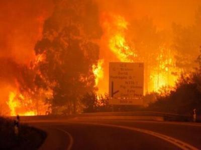葡萄牙发生森林火灾 死亡人数已经上涨至62人