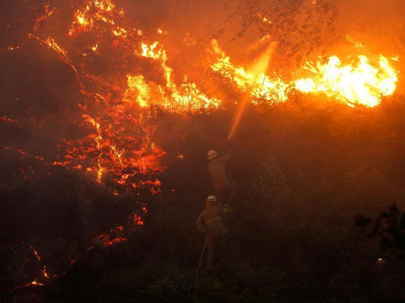 葡萄牙发生森林火灾致62死 葡萄牙政府宣布全国哀悼三日