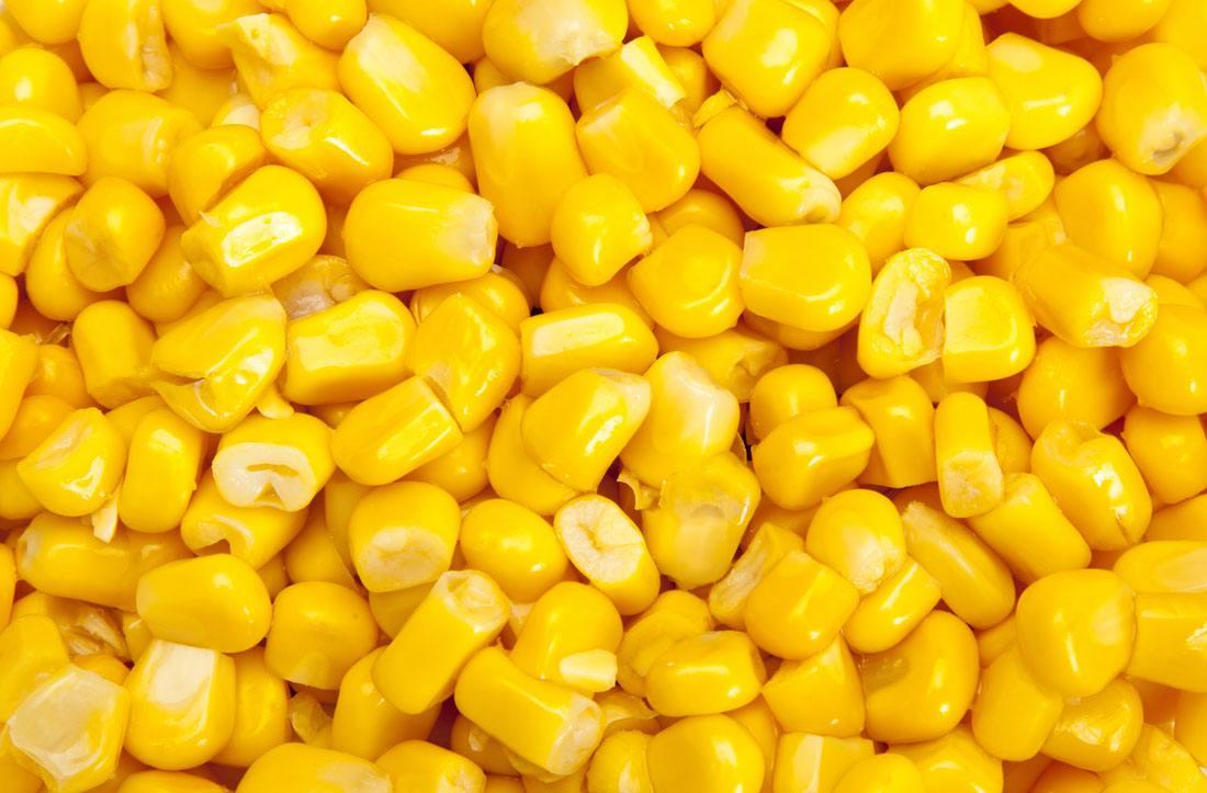 市场供需将逐渐改善 玉米价格走势趋弱