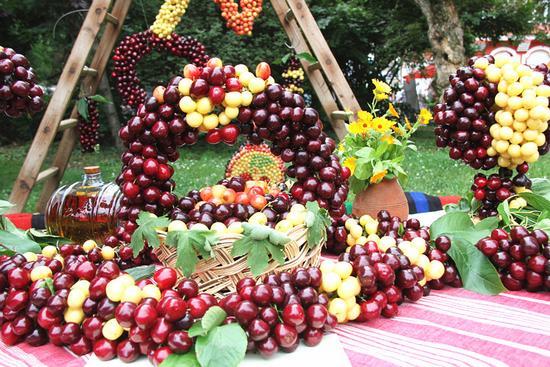 保加利亚樱桃节 保加利亚和中国水果合作结出硕果