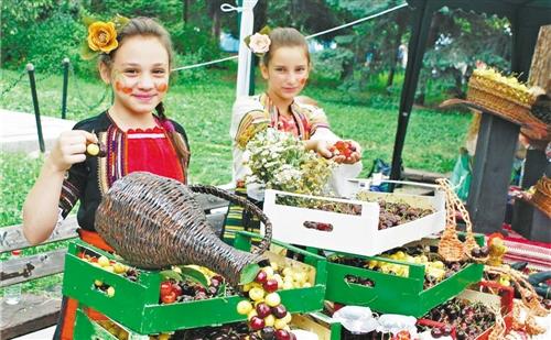 保加利亚樱桃节开幕 中保水果领域的合作已结出硕果
