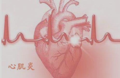 预防心肌炎的方法有哪些?怎样预防心肌炎?