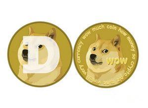 什么时候应该备份狗狗币钱包?