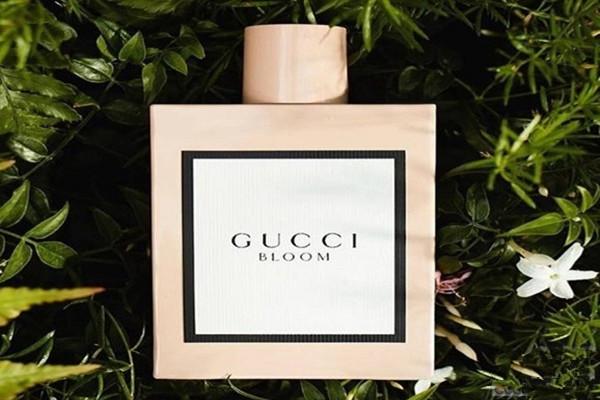 Gucci Bloom香水系列 展现浪漫高雅的情怀