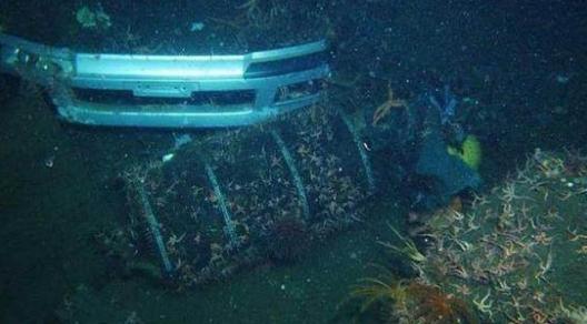 为了寻找亡妻和亡女,年过半百的他考下了潜水执照去潜水寻亲