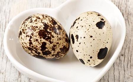 鹌鹑蛋图片和介绍