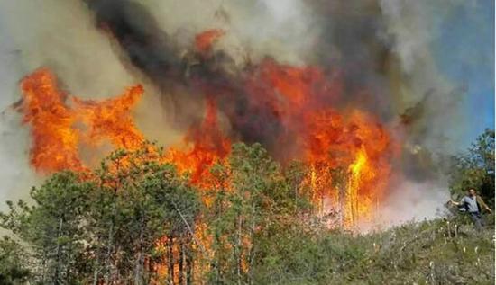 市长救火严重烧伤 全身烧伤面积为18%左右仍在医院接受治疗