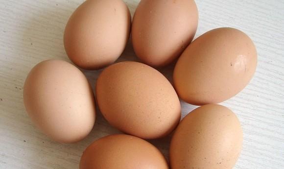 鸡蛋期货趋势行情并不明显