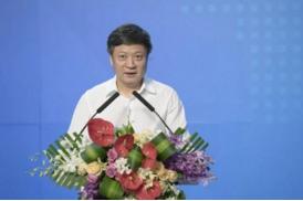 孙宏斌当选为乐视网董事长