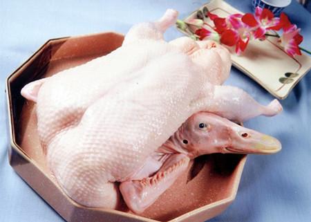 白条鸭图片和介绍