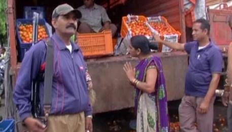 印度现西红柿大盗 保镖持枪保护西红柿!