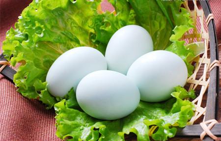 鸭蛋多少钱?鸭蛋价格