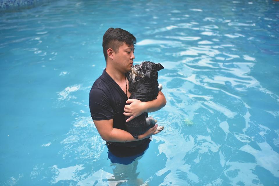 爱犬中暑去世 男子建狗狗游泳池纪念