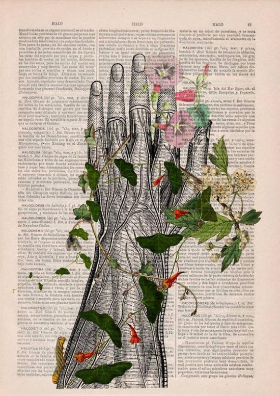藤蔓和手掌。
