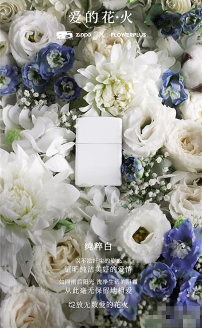 Zippo携手花加推出全新防风打火机 打造专属浪漫回忆