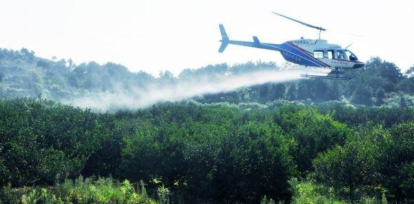 南丰县开展首次使用私人直升机防治病虫害