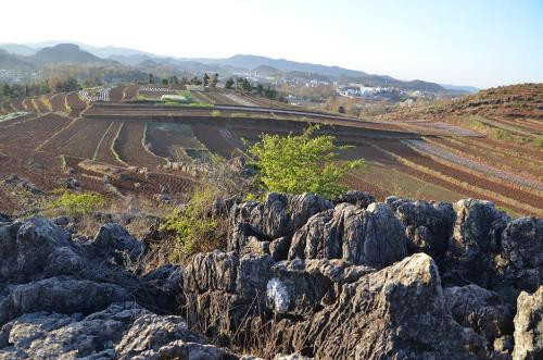 贵州毕节山体垮塌 至少28户人家被埋 伤亡保险该如何应对?