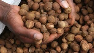 椰子油的健康声明很流行? 告诉你椰子油到底是如何排列的