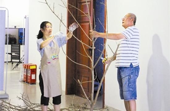 树干树枝做素材 成了有关台风的记忆