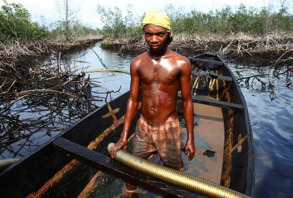 """""""偷油大盗""""面对环境污染选择了生存"""