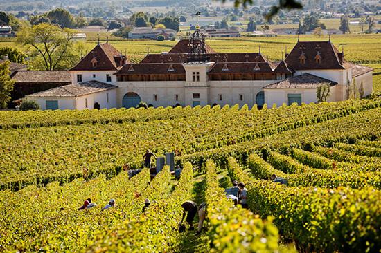 重要过渡期 金钟酒庄将加快葡萄酒旅游业发展