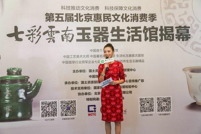 第五届北京惠民文化消费季·七彩云南玉器生活馆盛大揭幕