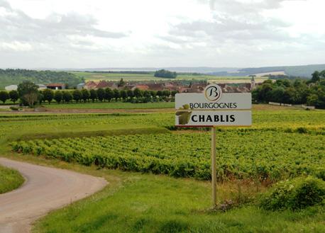 法国勃艮第产区:今年葡萄名酒产量终于有所回升
