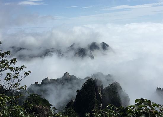 雨后黄山现浩瀚云海 让上山的中外游客大饱眼福