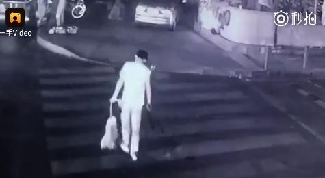 男子用弓箭射杀小狗 直到小狗死亡将尸体移至垃圾桶