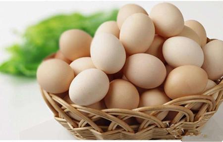 鸡蛋中长期供应宽松 鸡蛋期价反弹空间有限