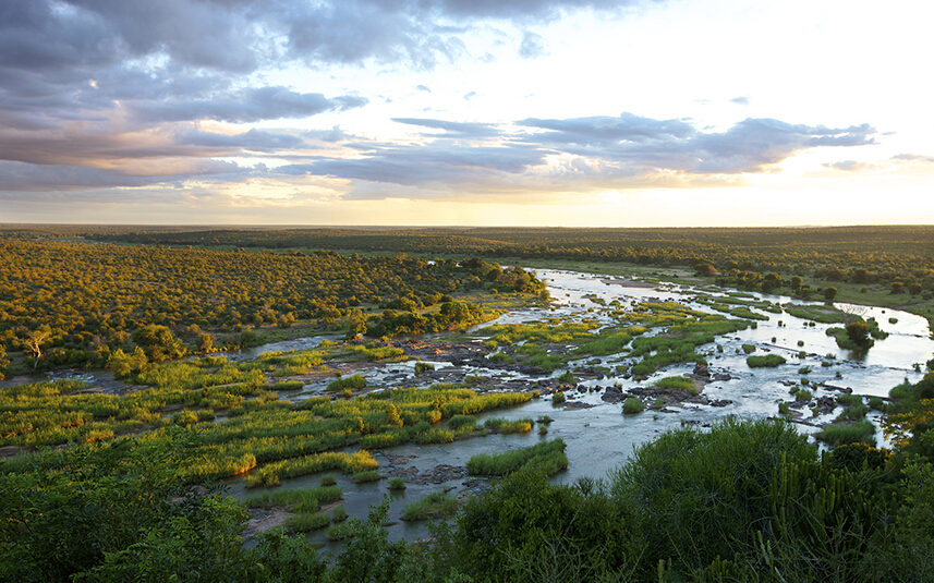 南非克鲁格国家公园(Kruger National Park):克鲁格国家公园是南非最大的野生动物园。公园长约320千米,宽64千米,占地约2万平方千米,面积大小相当于英国的威尔士。园中一望无际的旷野上,分布着众多的大象、狮子、犀牛、羚羊、长颈鹿、野水牛、斑马、鳄鱼、河马、豹、猎豹、牛羚、黑斑羚、鸟类等异兽珍禽。