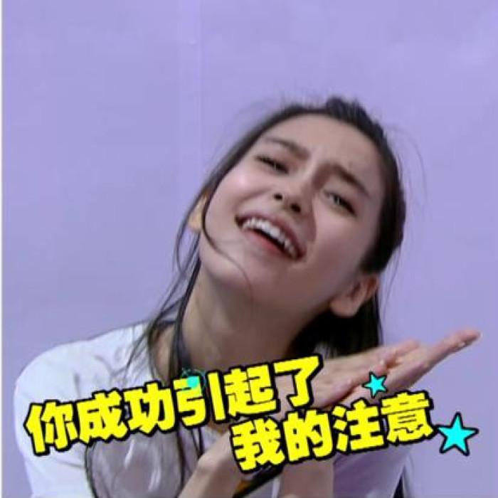 杨天宝是什么梗