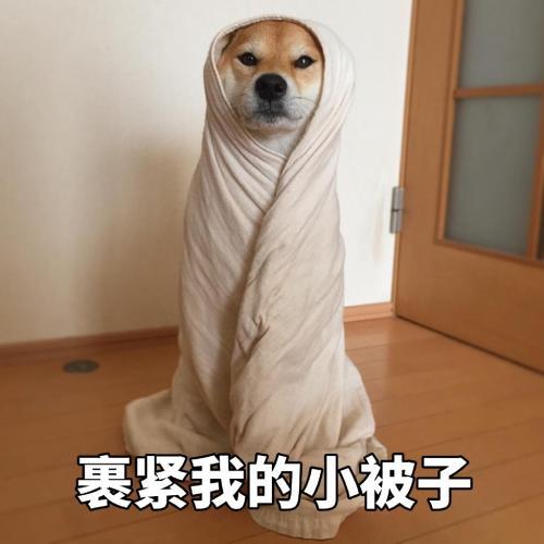 北京开始娘了出处在哪