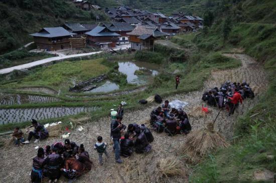 傍晚,岑秋苗寨民众团圆围坐,享受一年一度的烧鱼美味。